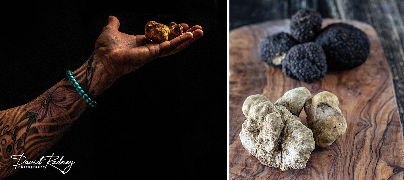 truffle header
